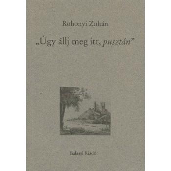 """Rohonyi Zoltán, """"Úgy állj meg itt, pusztán"""" Közelítés XIX. századi irodalmunkhoz"""