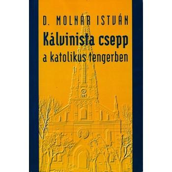 D. Molnár István, Kálvinista csepp a katolikus tengerben