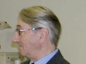 Szabics Imre