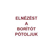 Szentjóbi Szabó László összes költeményei